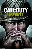 Trends International Wall Poster Call of Duty: Wwii-Key Art, 22.375