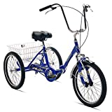 Ein Adult Tricycles Review and Comparison