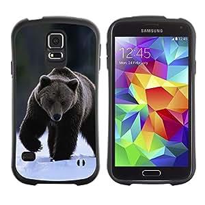 Suave TPU GEL Carcasa Funda Silicona Blando Estuche Caso de protección (para) Samsung Galaxy S5 / CECELL Phone case / / The Winter Grizzly Bear /