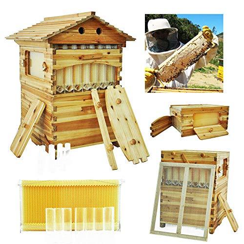 (7X Upgraded Free Flow Honey Hive Beehive Frames + Beekeeping Brood Cedarwood Box)