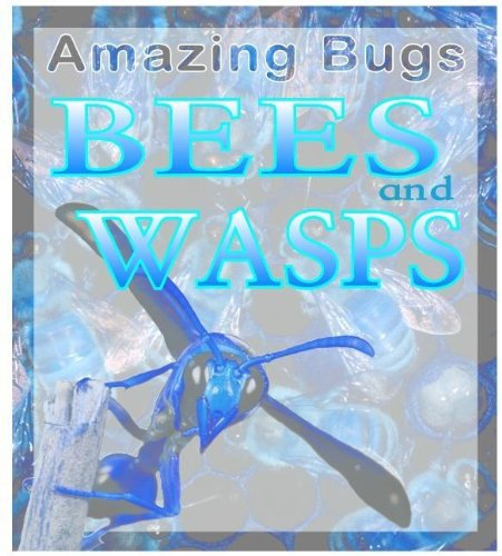 Read Online Bees & Wasps (Amazing Bugs) ebook