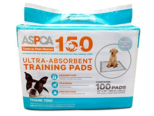 Buy what are the best puppy pads