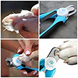 Dog Nail Clippers Large Breed - Easy to Use Dog