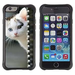 Suave TPU GEL Carcasa Funda Silicona Blando Estuche Caso de protección (para) Apple Iphone 6 PLUS 5.5 / CECELL Phone case / / White Kitten Blue Green Eye Mongrel Brown /