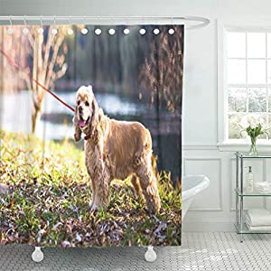"Emvency 72""x78"" Shower Curtain Waterproof Bathroom Home Decor Adult American Cocker Spaniel Standing Near Lake Animal Attractive Autumn Beautiful Polyester Fabric Adjustable Hooks Set 1"