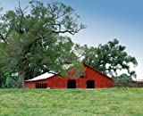 Attractive Barn in Louisiana's Cajun Country. A Fine-art Photographic Print by Carol M. Highsmith.