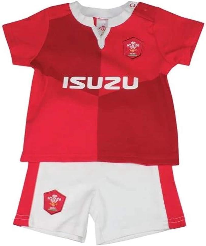 WRU Gales Rugby 2019/20 - Juego de Camiseta y Pantalones Cortos ...