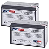 Liftmaster K74-30762 Replacement Battery Set of 2 by UPS Battery Center