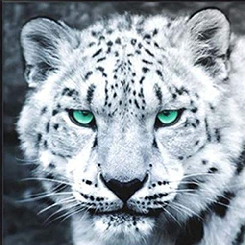 21secret 5D Square Diamond DIY Painting Full Drill Animals Evil Face of Angry Leopard Cross Stitch Home Decor Embroidery Art Kit by Number ()