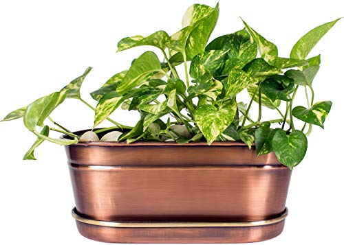 H Potter Small Planter w/Antique Copper Finish & Brass Accents, Indoor Centerpiece & Outdoor Garden Pot & Plant Box Holder with Tray for Succulents, Flowers & ()