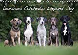 Lousiana Catahoula Leopard - The Nationale State Dog of Louisiana (Wall Calendar 2019, 14 Pages, Size DIN A4 = 8.27 x 11.69 inches)