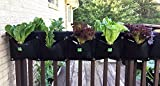 Delectable Garden Cloth 2 Pocket Saddlebag