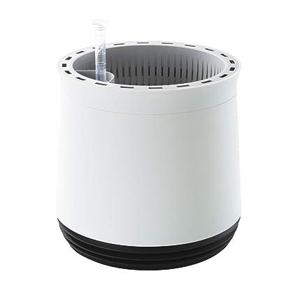 Airy Pot Naturlicher Luftreiniger Fur Allergiker Patentierter Pflanztopf Als Filter Gegen Schadstoffe Haus Staub Pollen Geruch Allergie