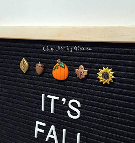 FALL/Autumn Accessories for Felt Letter Board. Set of 5 polymer clay icons Pumpkin, Acorn, Sunflower, and Leaves.