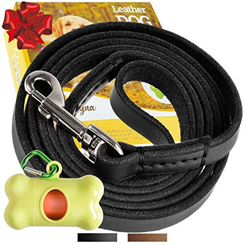 ADITYNA Leather Dog Leash 6 Foot – Soft and Strong Leather Leash for Small and Medium Dog