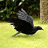 IMOSA Realistic Crow Decoration Crow Décor Crow