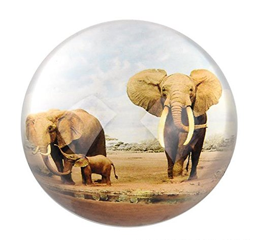 80 MM DOME PAPERWEIGHT ELEPHANT FAMILY, Case of 36