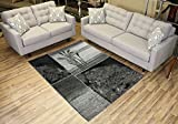 """Designer Collection Wheat Nature Design Modern Contemporary Area Rug Rugs 3 Different Color Options (Grey, 4'11″x6'11"""") Review"""