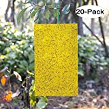 Kensizer 20-Pack Dual-Sided Yellow Sticky Traps for Flying Plant Insect Like Fungus Gnats
