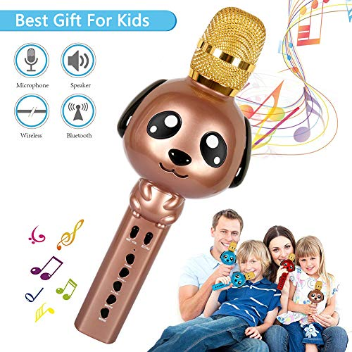 Buy Kids Karaoke Machine Microphone for Kids Karaoke Microphone Bluetooth Microphone Wireless Microp...