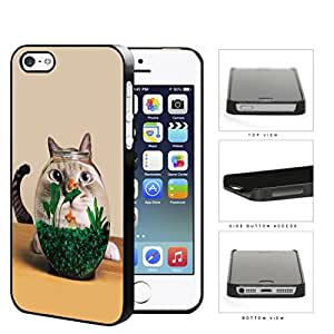 Curious Cat And Fish Bowl Hard Plastic Snap On Cell Phone Case Apple iPhone 5 5s