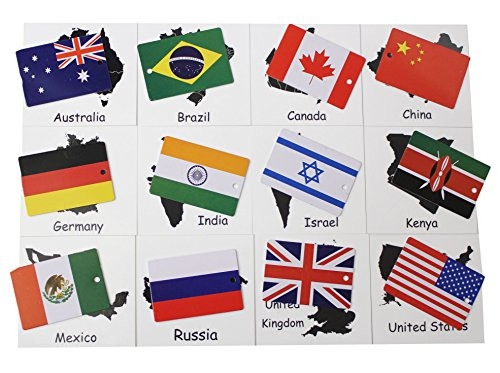 Country & Flag Match - Montessori geography materials - Continent box