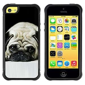 Suave TPU GEL Carcasa Funda Silicona Blando Estuche Caso de protección (para) Apple Iphone 5C / CECELL Phone case / / Pug Sad Dog Eyes Pet Cute Puppy /