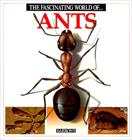 Book The Fascinating World of Ants