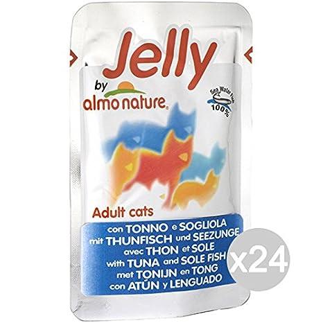 Almo nature Juego 24 Gato 5038 Sobres 75 Jelly Tonno Sogliola Comida para Gatos: Amazon.es: Productos para mascotas