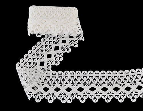 eZthings® Venise Edging Lace Trim From Eyelet Fabric For DIY Craft Venice Trims (3 Yard, (17th Century Costume Patterns)