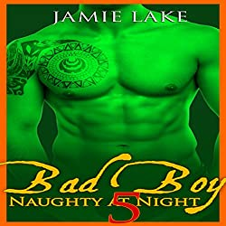 Bad Boy: Naughty at Night, Book 5
