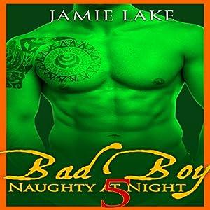Bad Boy: Naughty at Night, Book 5 Audiobook