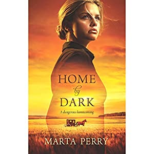 Home by Dark Audiobook