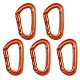 Fusion Climb Contigua II Luxury Satin Edition Grooved Straight Gate Key Nose Carabiner Orange 5-Pack