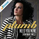 Need You Now (How Many Times) (Single)