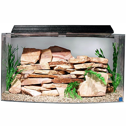 SeaClear 46 gal Bowfront Acrylic Aquarium Combo Set, 36 by 16.5 by 20″, Clear