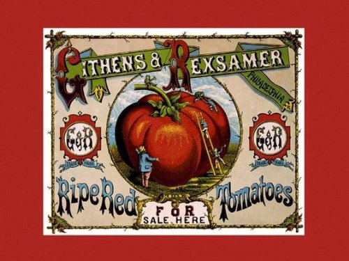 (CANVAS Crate Label for Ripe RED Tomatoes, Philadelphia 12