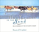 img - for Hoofprints in the Sand: Wild Horses of the Atlantic Coast book / textbook / text book