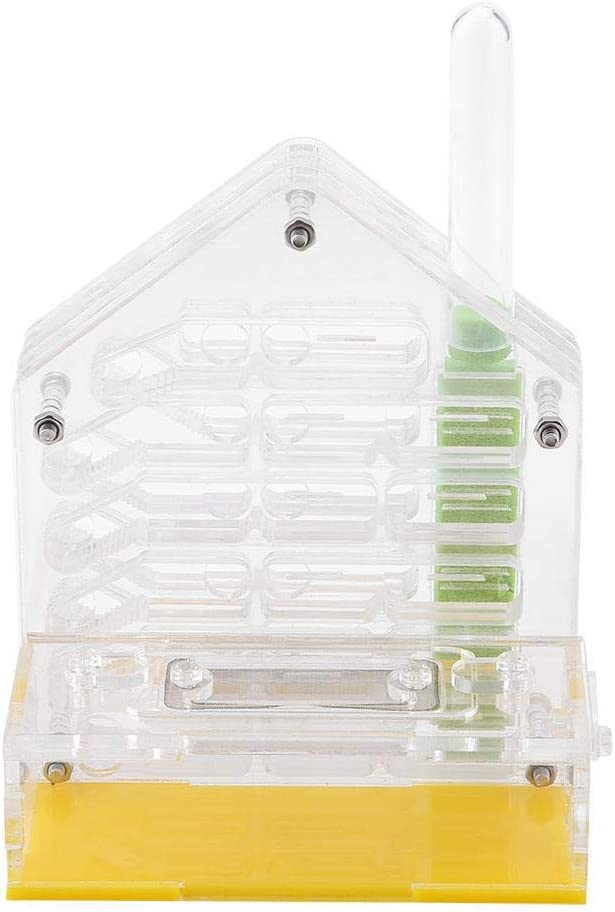 in acrilico Mini nido di formiche in vetro con zona attiva per insetti Sweo