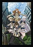 鋼殻のレギオス第12巻 (限定版) [DVD]