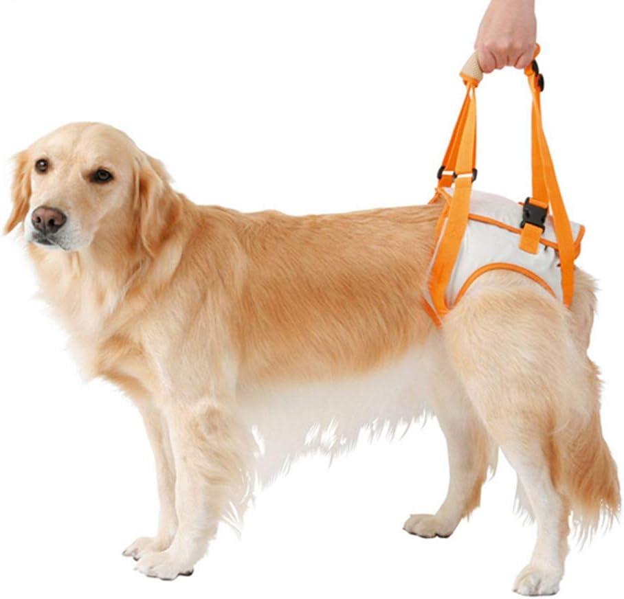 fushida - Arnés de Apoyo para el Cuidado del Perro, arnés Acolchado para el Levantamiento de Pesas para Perros