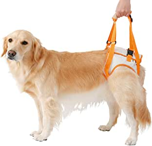 fushida - Arnés de Apoyo para el Cuidado del Perro, arnés ...