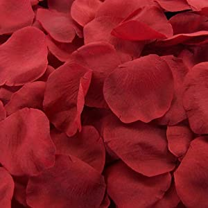 Red Silk Rose Petals ~ 200 Petals by efuture 101