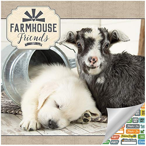 Farm Animal Calendar 2019 Set -- Deluxe 2019 Farm Animals Wall Calendar with Chicken, Goat, Rabbit and Other Farmhouse Friends (Bundle with Over 100 Calendar Stickers) (Friends Calendar)