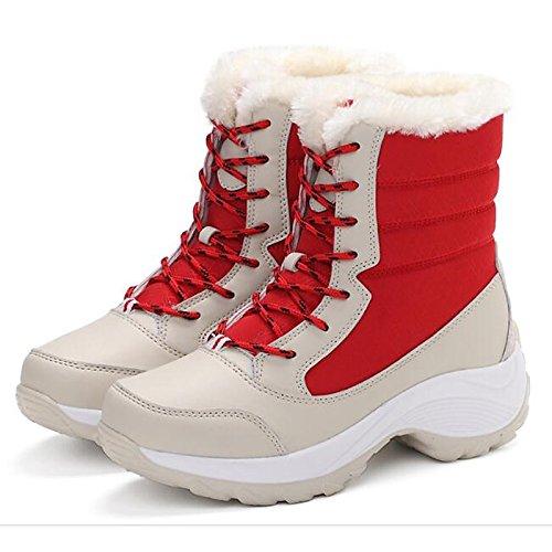 ZHZNVX HSXZ Zapatos de Mujer de Tela Caída de Primavera Comodidad Nieve Botas Botas Botas de Tacón Plano Mid-Calf for Casual Azul Rojo Negro Blanco,Rojo,US5.5/UE36/UK3.5/CN35 36 EU