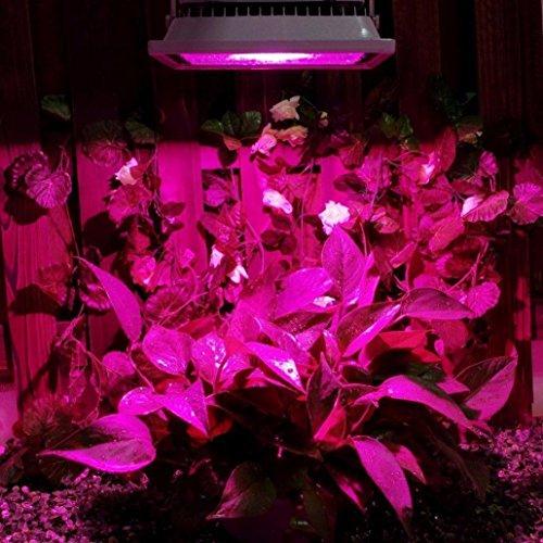 LED Grow Light Bulb, Energy Saving Hydroponic Hydro Plant