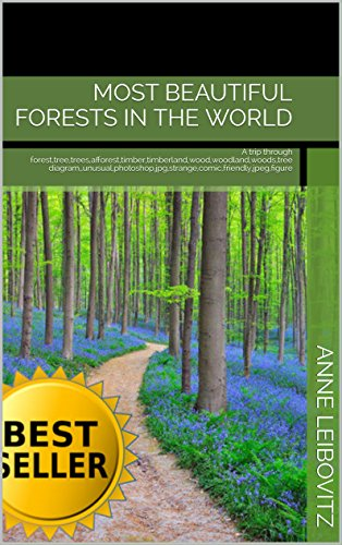 Most Beautiful Forests in The World: A trip through forest,tree,trees,afforest,timber,timberland,wood,woodland,woods,tree diagram,,unusual,photoshop,jpg,strange,comic,friendly,jpeg,figure ... (Photo Collections Book 22) (Timberland Collection)