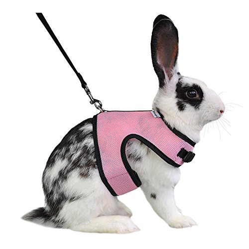 Niteangel Adjustable Soft Harness with Elastic Leash for Rabbits (L, Pink)