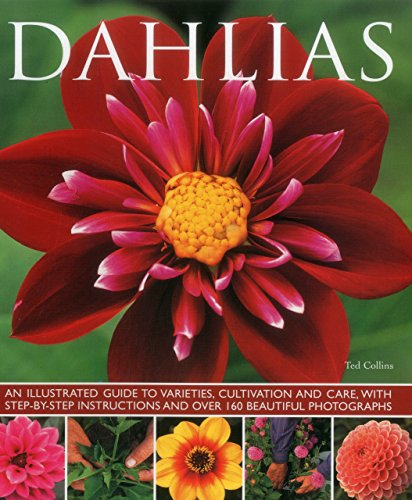 Growing Dahlia Flowers (Dahlias: An Illustrated Guide To Varieties, Cultivation And Care, With Step-By-Step Instructions And Over 160 Beautiful Photographs)