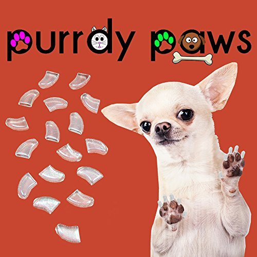 Clear Soft Nail Caps for Dogs Claws Purrdy Paws (Jumbo) by Purrdy Paws